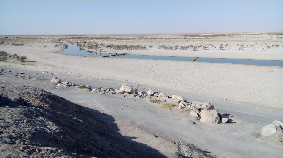 چرا محیط زیست خشکشدن هامون را انکار میکند؟ +تصاویر
