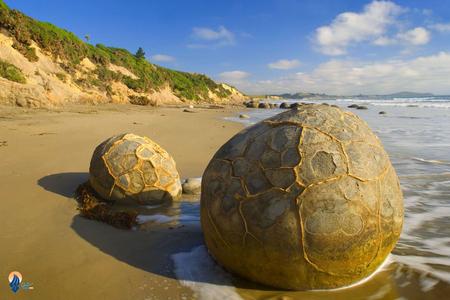 سنگ های تخم مرغی: یکی دیگر از جاذبه های توریستی و همچنین نقاط عجیب دنیا نیوزیلند سنگ های تخم مرغی هستند. این سنگ ها که در اندازه های بسیار بزرگ قرار دارند در دوره های پیشین در کف دریا بوده اند که البته به علت تغییرات شرایط زمین به ساحل آمده اند.