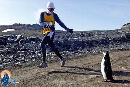 مسابقات دو ماراتن برای اولین بار در قطب جنوب برگزار شد.