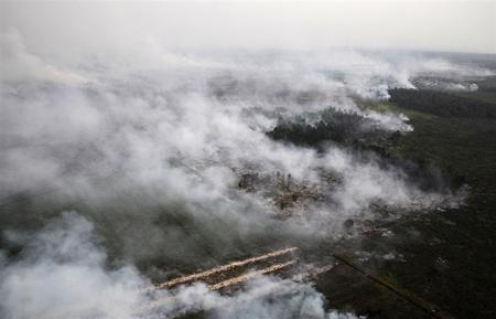 آتش سوزی جنگلها در مالزی