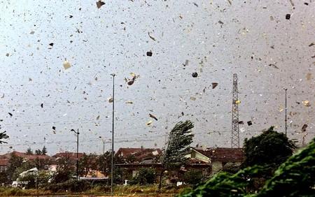 وزش طوفان در شهر ترزو _ ایتالیا