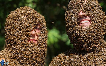مزرعه داران عسل در جشنواره سالانه مزرعه داران انتاریو _ کانادا