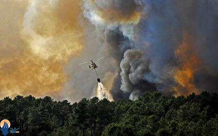 ناکامی آتش نشانان پرتقالی در مهار حریق از جنگلهای کاستلو