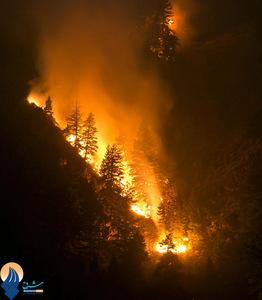 ناکام ماندن آتش نشانان در مهار شعلههای آتش در جنگلهای آیداهو _ آمریکا
