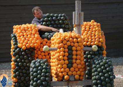 ساخت یک تراکتور با کدوتنبل توسط یک کشاورز آلمانی برای نمایش در جشنواره سالانه کدو در آلمان
