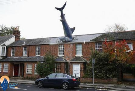 استفاده یک طراح انگلیسی از مجسمه یک کوسه در نمای خانهاش در شهر آکسفورد