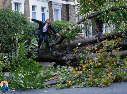 افتادن درختی براثر وزش بادهای تند در لندن
