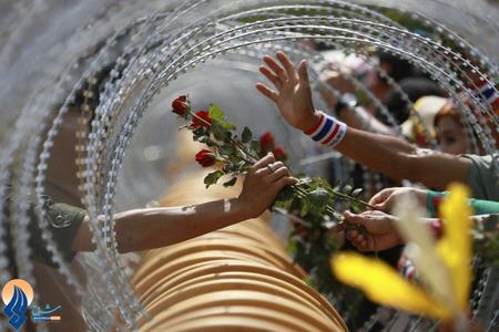 اهدا یک شاخه گل از طرف تظاهرکنندگان ضددولتی به نیروهای نظامی در بانکوک _ تایلند