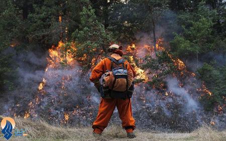آتش سوزی در جنگلهای کالیفرنیا