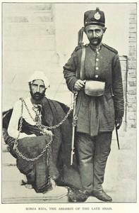 میرزا رضای کرمانی، قاتل ناصر الدین شاه قاجار