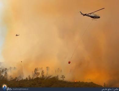 تلاش برای مهار آتش سوزی در جنگلهای کالیفرنیا