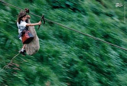 هیجان در ارتفاع ۸۰۰ متری و عبور از رودخانه ریونگرو، مسیر ۴۰۰ متری کودکان این منطقه از کلمبیا برای رسیدن به مدرسهشان است.