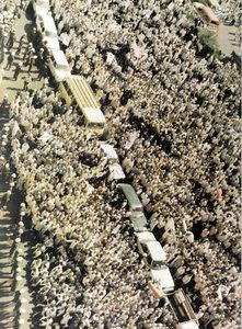 1366، ساعات اولیه برگزاری مراسم برائت از مشرکین در مکه مکرمه