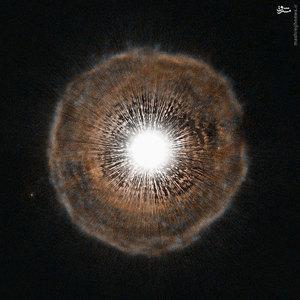 U Camelopardalis یا به اختصار U Cam، ستارهای در صورت فلکی زرافه است. ستاره های صورت فلکی زرافه کم نور و بینام هستند.