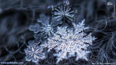 برف که فرم جامد باران است، تشکیل شده از میلیونها کریستال یخی است. زمانی که قطرات آب در ابرها یخ میزنند، برف تولید میشود. برای آن دمای هوا باید میان منفی ۴ درجه تا منفی ۲۰ درجه سانتیگراد باشد.