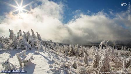 حدود یک ساعت طول میکشد تا یک کریستال برفی به زمین برسد. اگر دمای هوا بیش از منفی ۵ درجه سانتیگراد باشد و هوا رطوبت بالایی داشته باشد، دانههای برف بزرگتری تشکیل میشوند. اما در مناطقی که درجه هوا بسیار پایین است - برای مثال در مناطق قطبی - دانههای برفی حتی به صورت سوزن به زمین فرود میآیند.