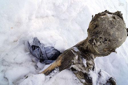 resized 934876 934 کشف مومیایی ۵۵ ساله در مکزیک