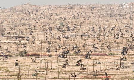 تصویری از صدها چاه نفت در ?کالیفرنیا? که توسط ماک گامبا گرفته شده است.  هرگاه اثر خلق?شده توسط یک انسان تخریب می?شود، آن را ?وندالیسم? می?نامیم، اما تخریب آنچه را که موهبت الهی و طبیعی است، پیشرفت قلمداد می?کنیم.