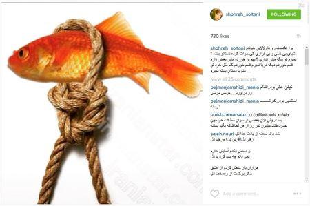 شهره سلطانی، بازیگر