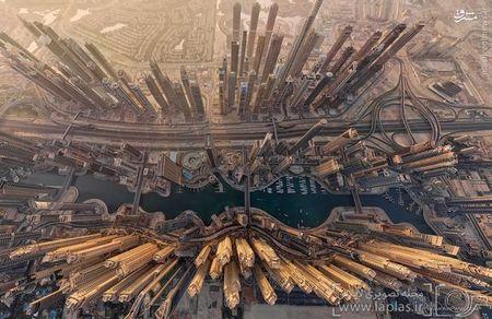 سواحل دوبی در امارات