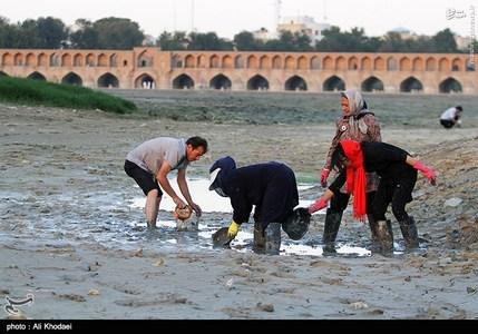پروژه مردمی نجات ماهی های گرفتار در مانداب های زاینده رود به همت جمعی از طبیعت دوستان و با همکاری اداره کل محیط زیست استان اصفهان
