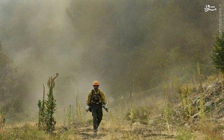 مبارزه با آتش سوزی جنگل های آمریکا ادامه دارد