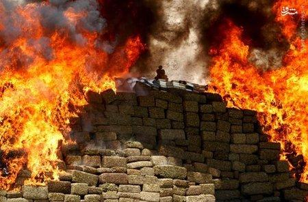 سوزاندن ماری جوانا و سایر مواد مخدر در اردوگاه نظامی مکزیک