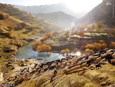 طبیعت ایران که خیلی کسل کننده است و هیچ چیز زیبا و شگفتانگیزی ندارد؛ خصوصا نقاط کوهستانی کردستان!