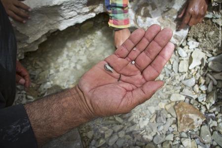 تنها چشمه نزدیک به روستای تیامین هم که آب بسیار کمی دارد،سرشار از کرم زالو میباشد.
