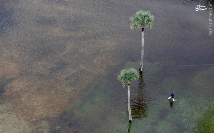 تصویری از سیل در ایالت کارولینای جنوبی آمریکا