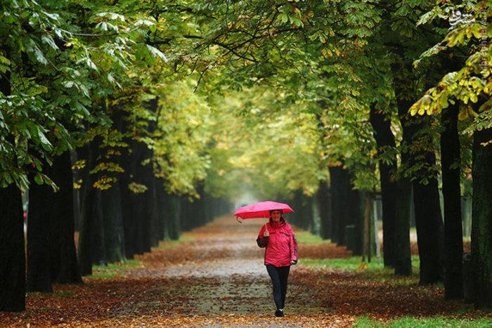 پیاده روی در منظره پاییزی
