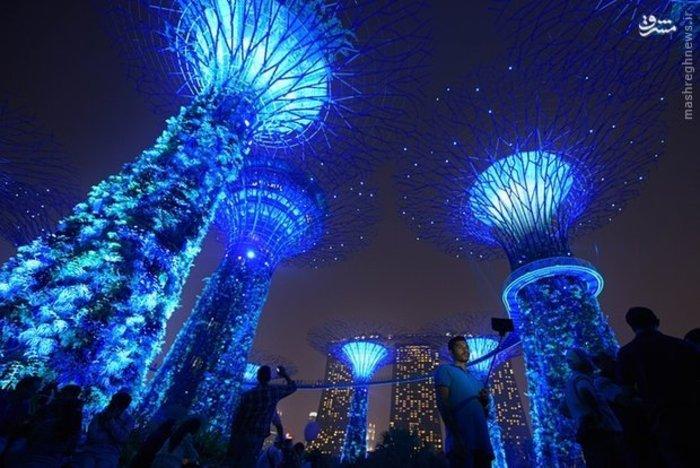 اثر هنری با عنوان «باغ» در سنگاپور