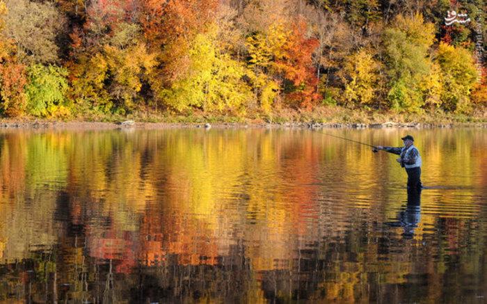 ماهیگیری در طبیعت پاییزی «بلومزبرگ»  آمریکا