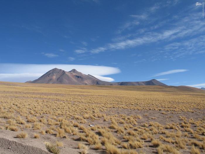 تصویری از بیابان آتاکاما پیش از سیل