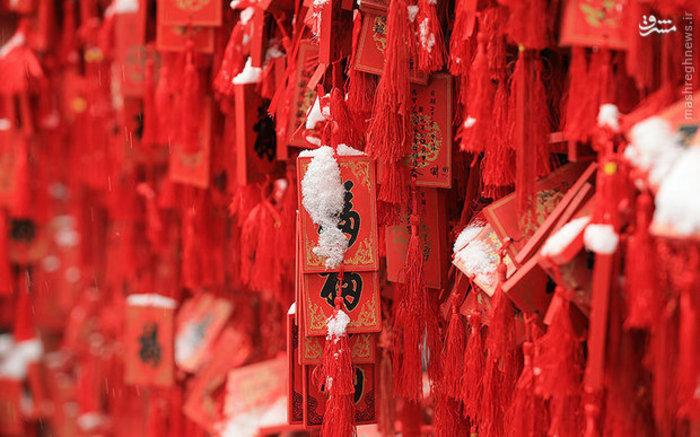 بارش برف در عمارت شاهزاده گونگ در پکن چین