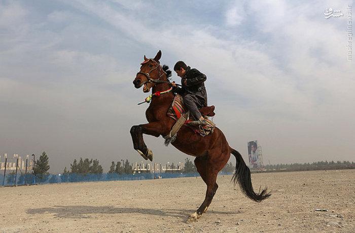 پسر افغان مهارت های اسب سواری خود را در کابل به نمایش گذاشته است