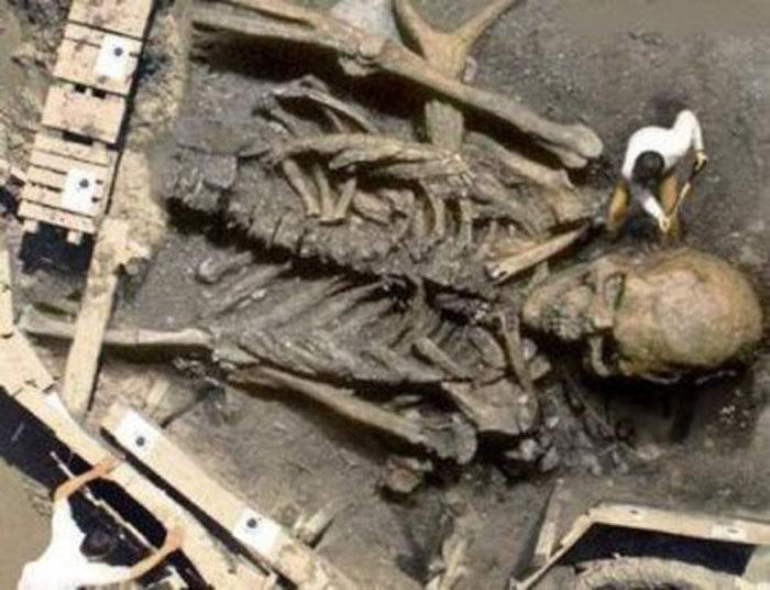 اسکلت غول پیکری که در خاورمیانه یافت شد