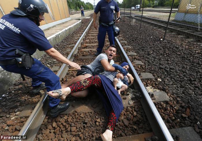 درگیری پلیس مجارستان با یک خانواده مهاجر. 3 سپتامبر 2015