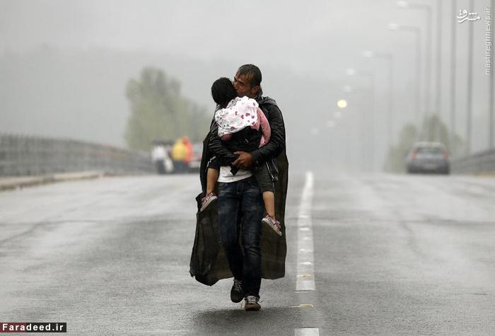 پناهنده ی سوری در حالیکه دخترش را میبوسد در هوای طوفانی مرز مقدونیه و یونان قدم میزند. 10 سپتامبر 2015