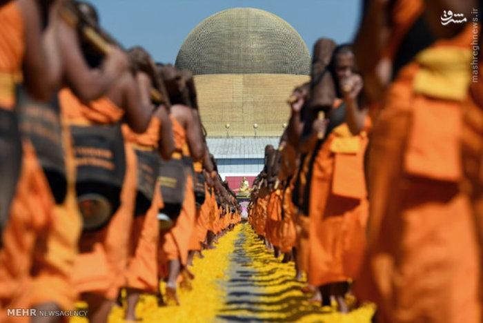 راهپیمایی راهبان بودایی روی گلبرگ ها در بانکوک