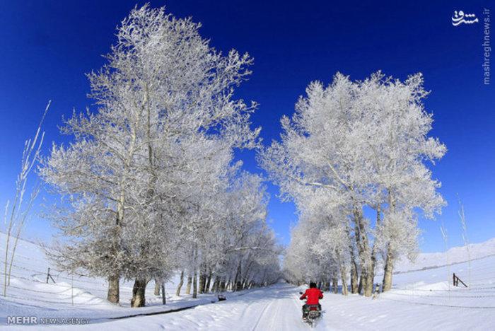 طبیعت زمستانی در چین