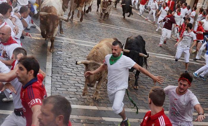 گاو بازی عکس خودکشی توریستی اسپانیا اخبار اسپانیا