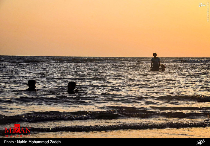 شنا در سواحل بوشهر,سواحل بوشهر