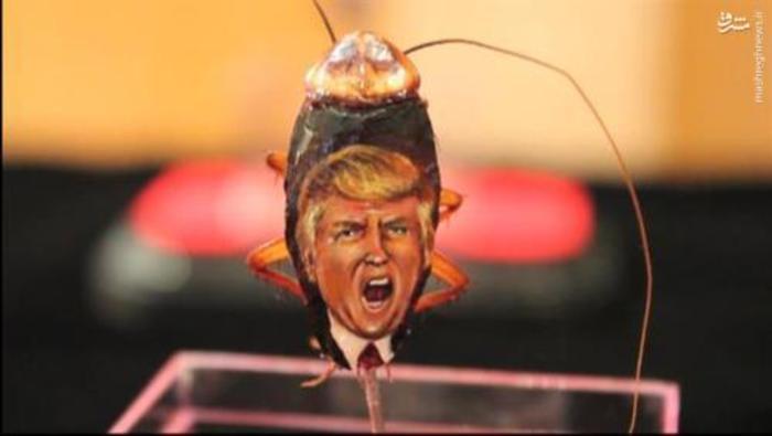 نقاشی ترامپ,نقاشی ترامپ روی سوسک,عکس ترامپ روی سوسک,ترامپ روی بدن سوسک