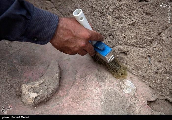 کشف آثار باستانی 11 هزار ساله در کرمانشاه