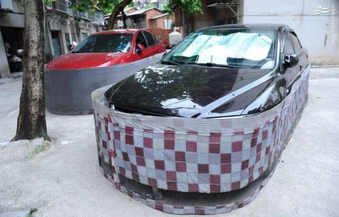 جلوگیری از ورود موش به خودرو در چین