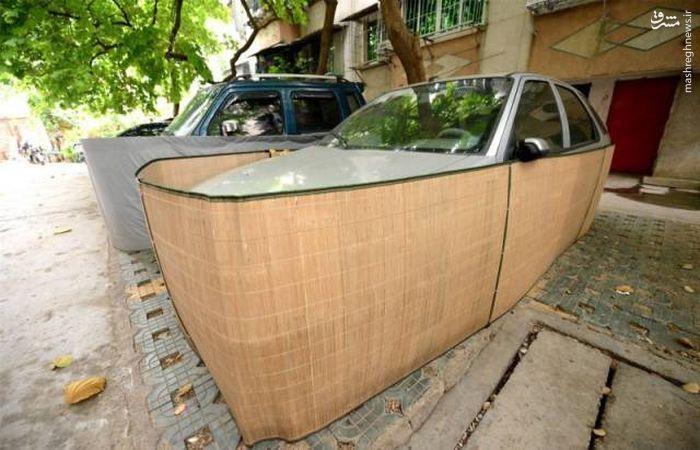 محافظت خودرو برای ورود موش به داخل خودرو